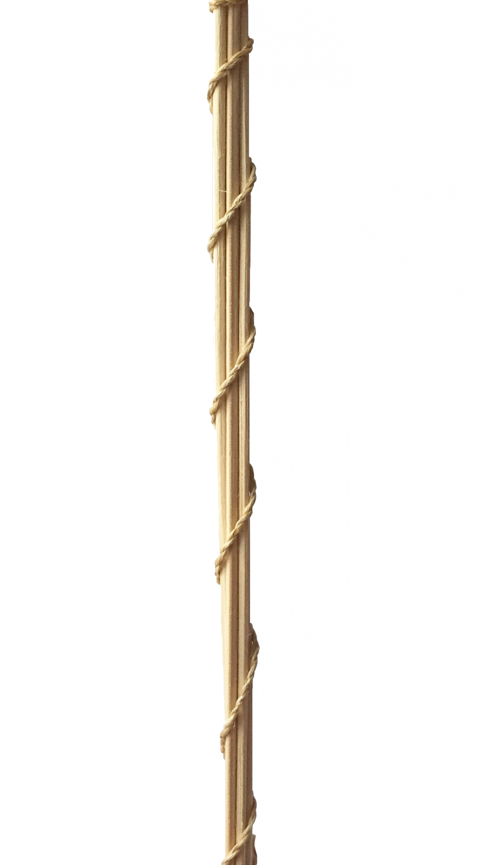 Тростниковый диффузер «Лемонграсс» 120 мл - 1